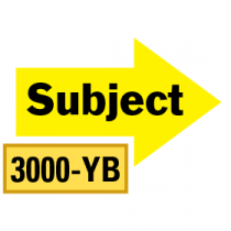 Solid Subject Arrows 1/2 Left-1/2 Right, Yellow/Black