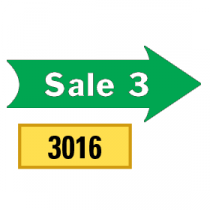 Solid Sale 3 Arrows 1/2 Left-1/2 Right, Green