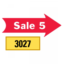 Solid Sale 5 Arrows 1/2 Left-1/2 Right, Red
